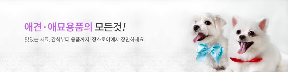 섹션3/상단 배너샘플